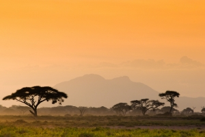 Amazing Savannah sunset - Proud African Safaris