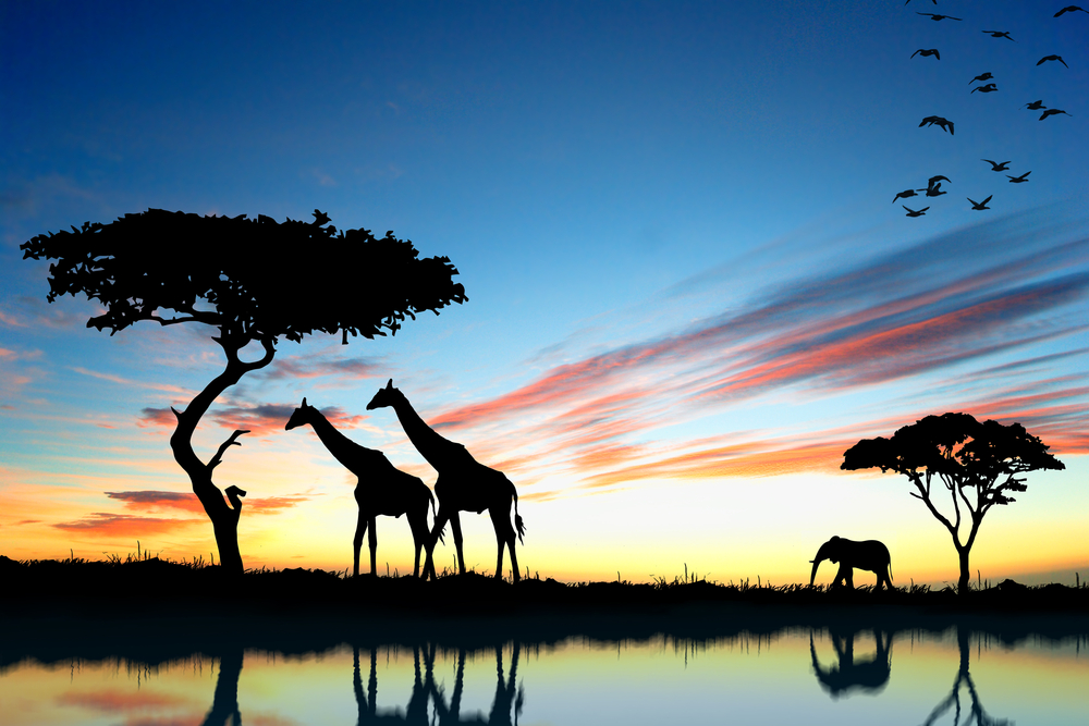 Amazing sunset Tanzania Safari - Proud African Safaris