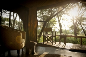 Tea time Dunia Camp Tanzania Safari - Proud African Safaris