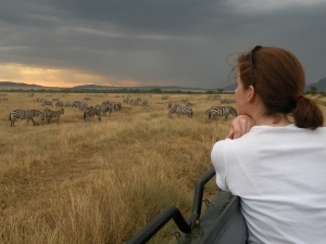 Tanzania Safari zebras - Proud African Safaris