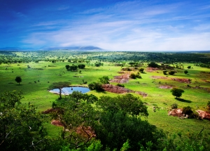 Gorgeous Savannah Tanzania Safari - Proud African Safaris