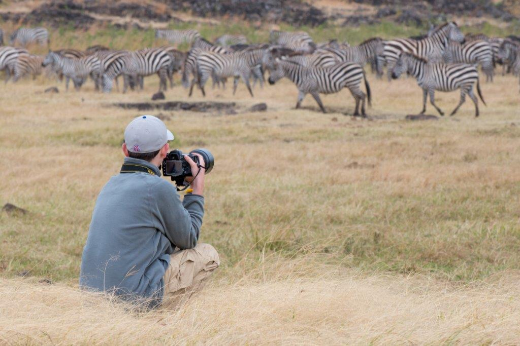Zebra photo shoot Tanzania Safari - Proud African Safaris