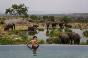 Four Seasons Serengeti Lodge - Serengeti safari - Proud African Safaris