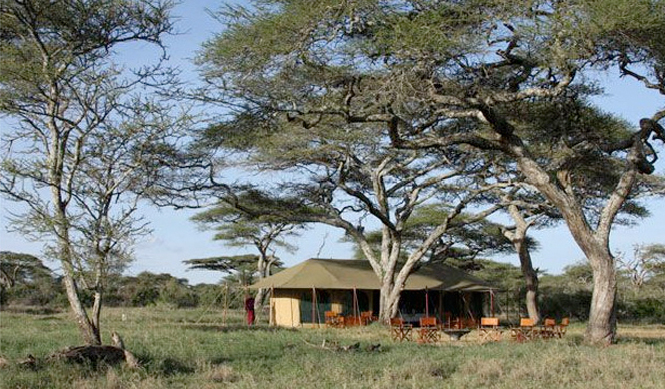 Lemala Ndutu Tented Camp - Tanzania safari - Proud African Safaris