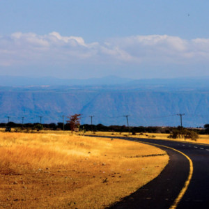 highway across serengeti