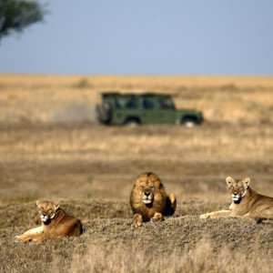 conservancies in Africa