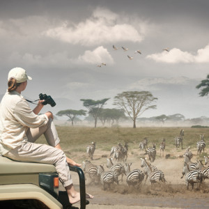 Serengeti tourism